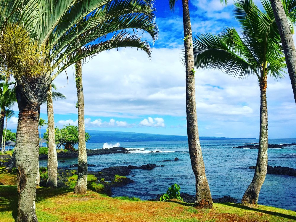 Photo credit: Elizabeth Erickson,   Hilo is my new favorite place!  , September 8, 2017