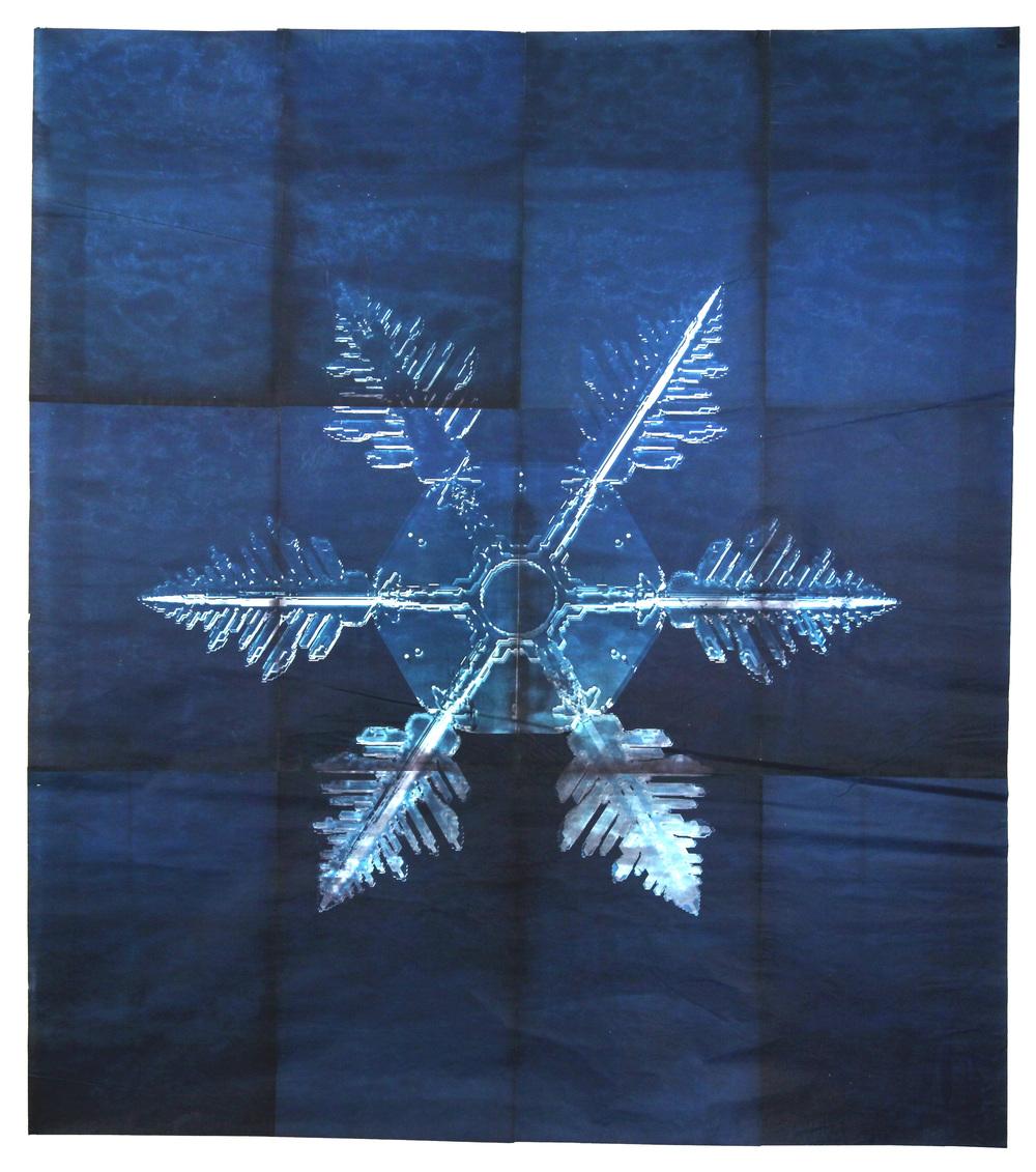 Snowflake #5, 2011