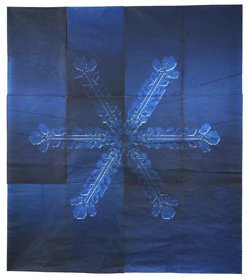 Snowflake #9, 2011
