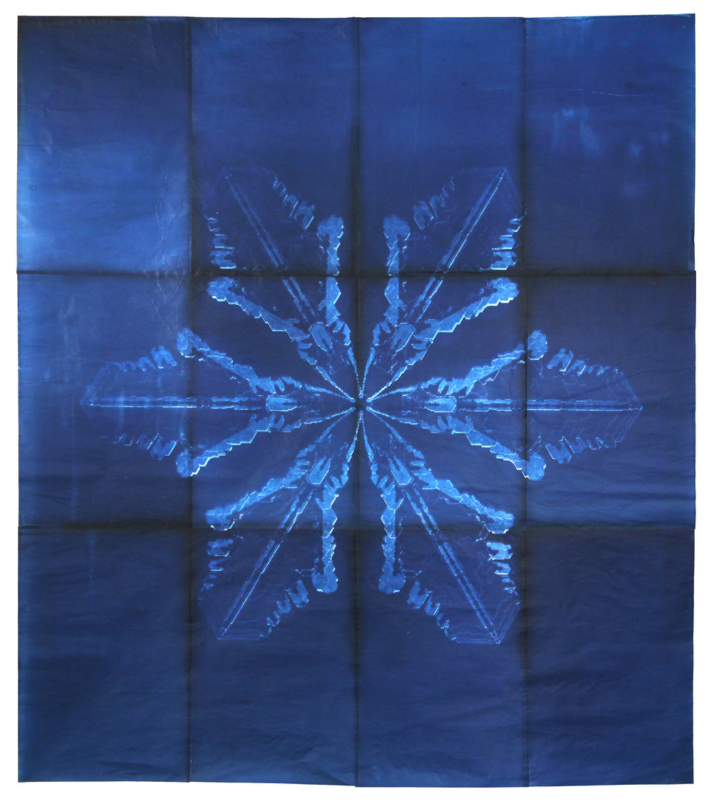 Snowflake #7, 2011