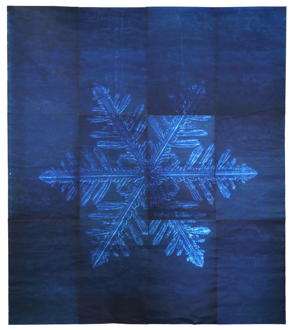 Snowflake-8.jpg