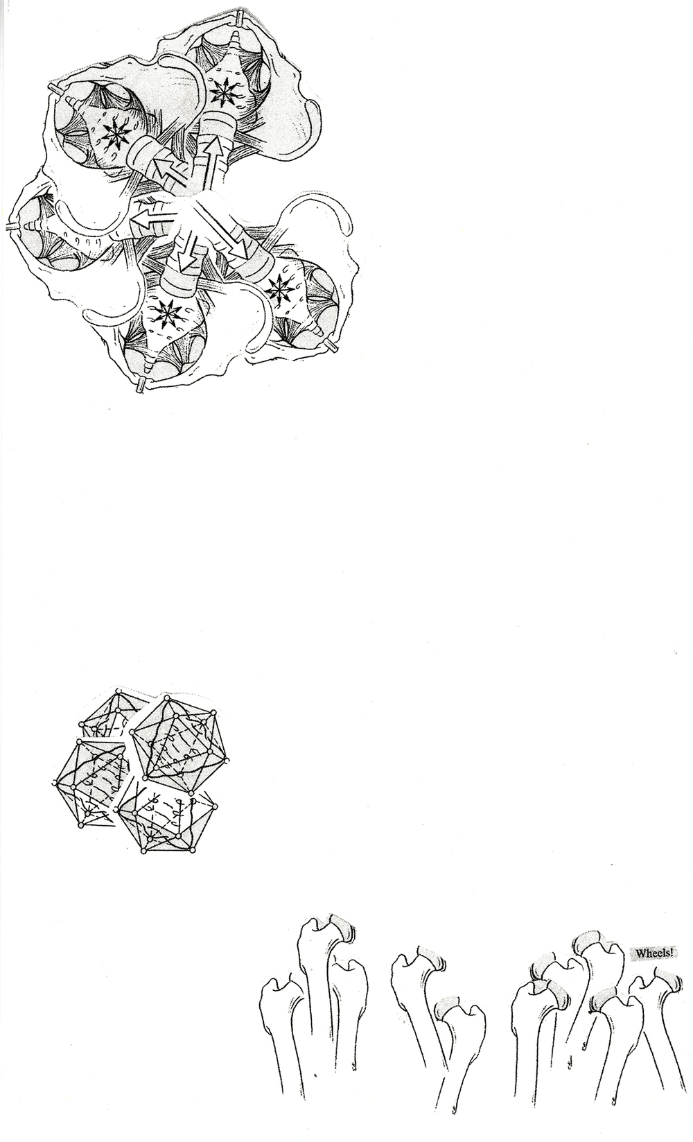 print024 copy.jpg