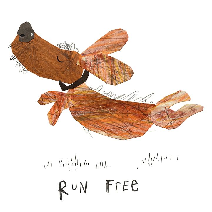 Run_freeLR.jpg