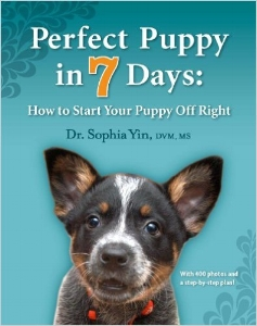 perfect_puppy_7_days