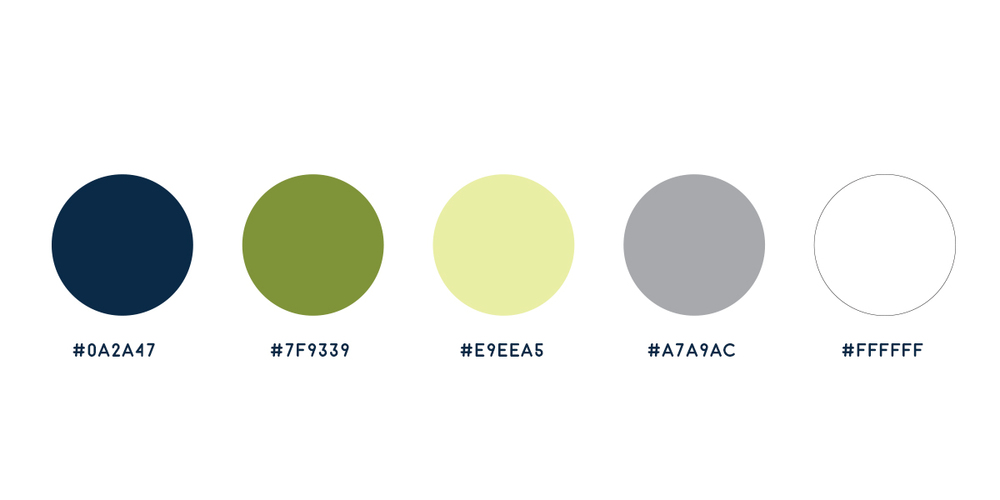 toms_colorpalette.jpg