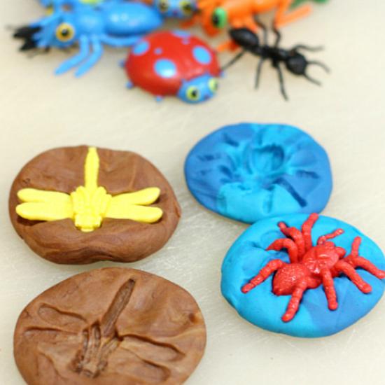 bug-fossils-playdough-.png