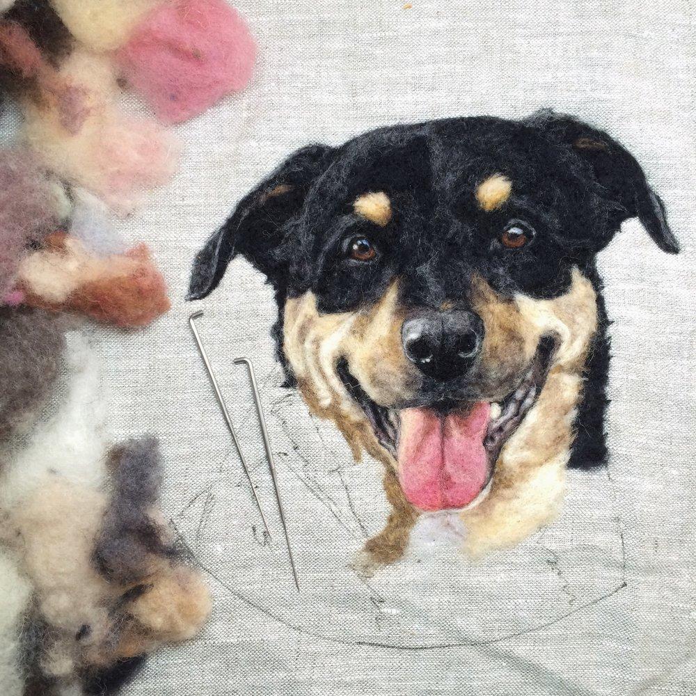 Dani+Ives+Dog+Portrait.jpg