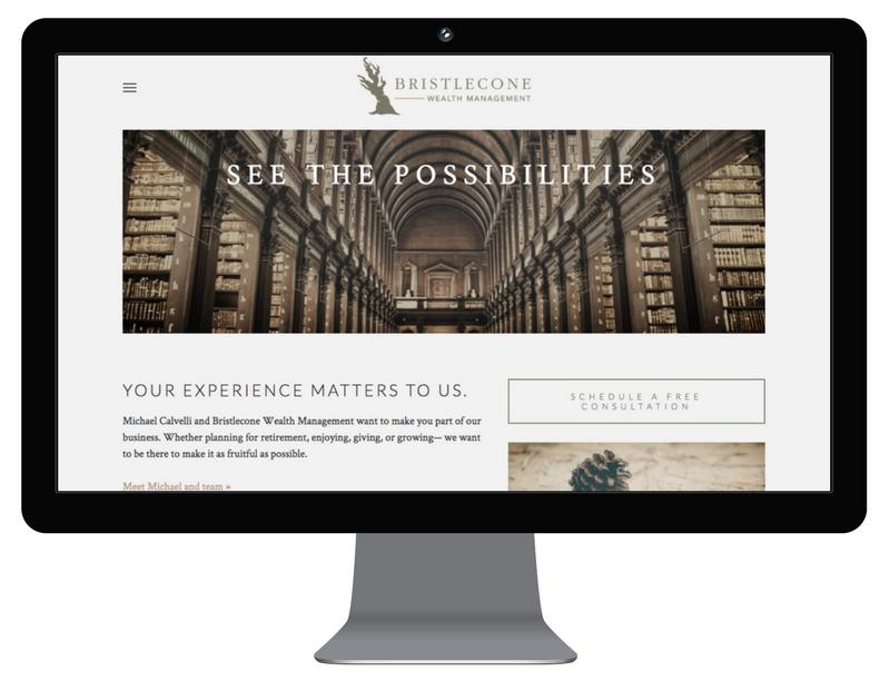 Bristlecone wealth management - web design