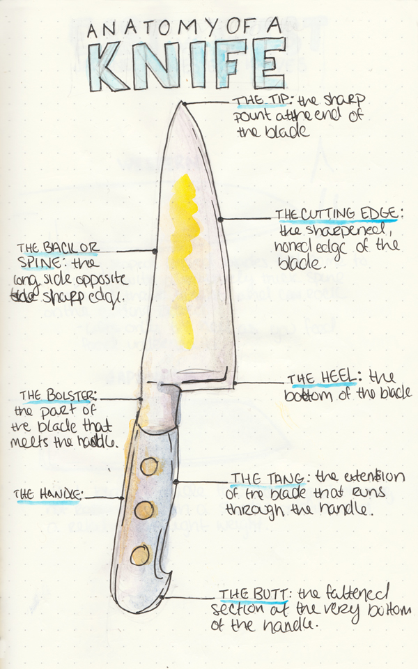 Anatomy-of-a-Knife.jpg