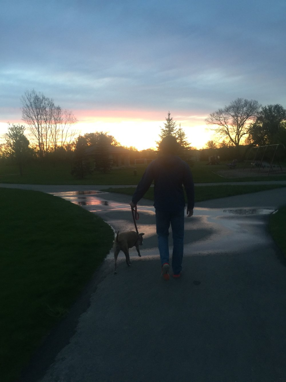From our walk on Friday night! The sky was so beautiful and I love taking walks with the whole gang!