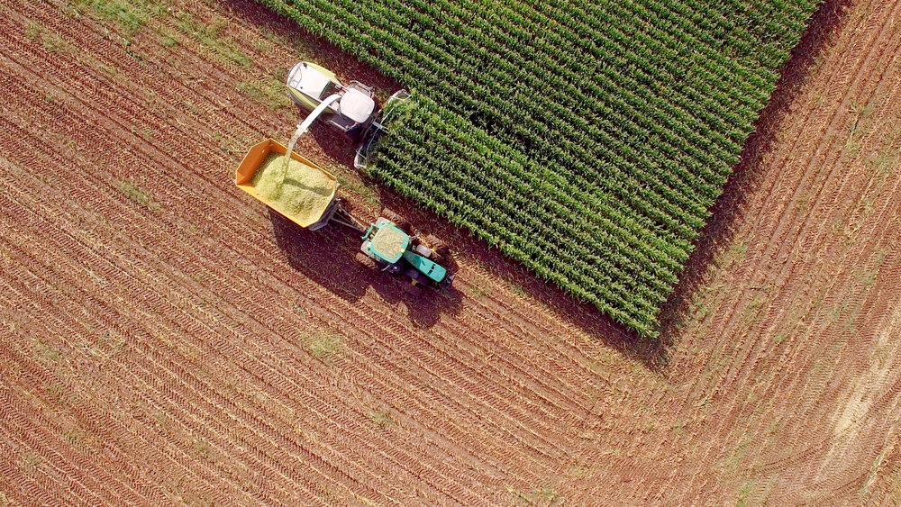 Agriculture_iStock-604352738.jpg