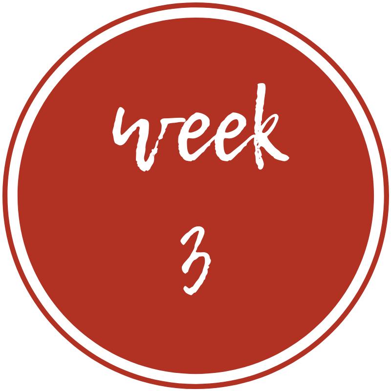 week-3.png