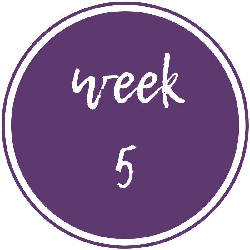 week-5.png