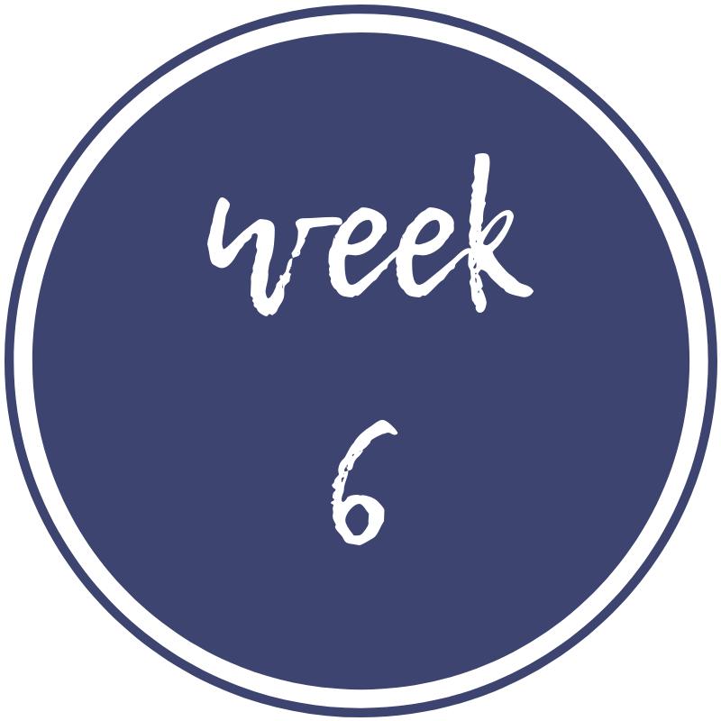 week-6.png