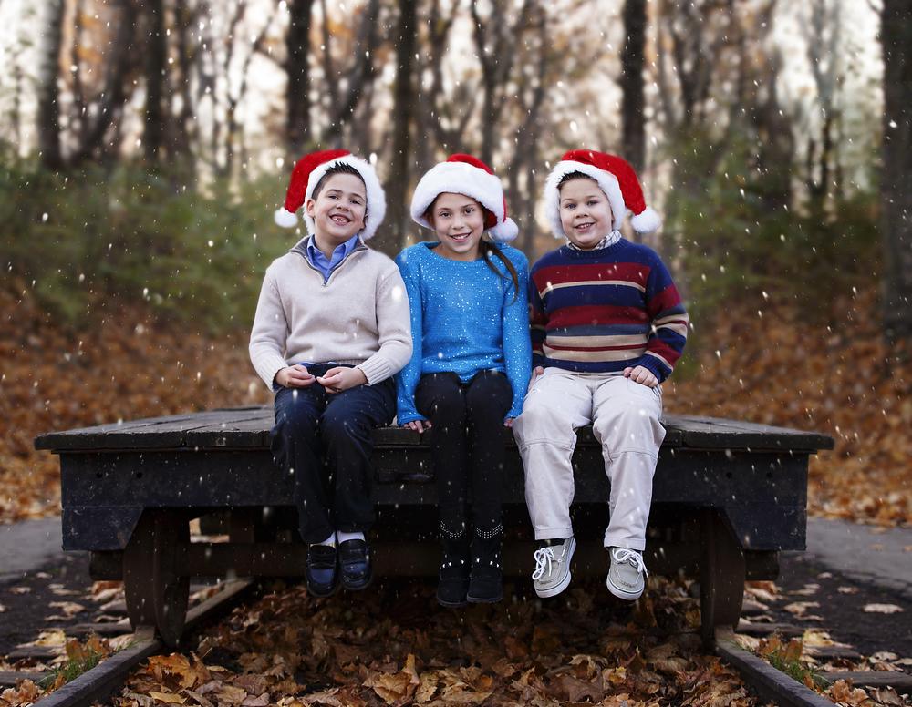 IMG_3067 edit snowy.jpg