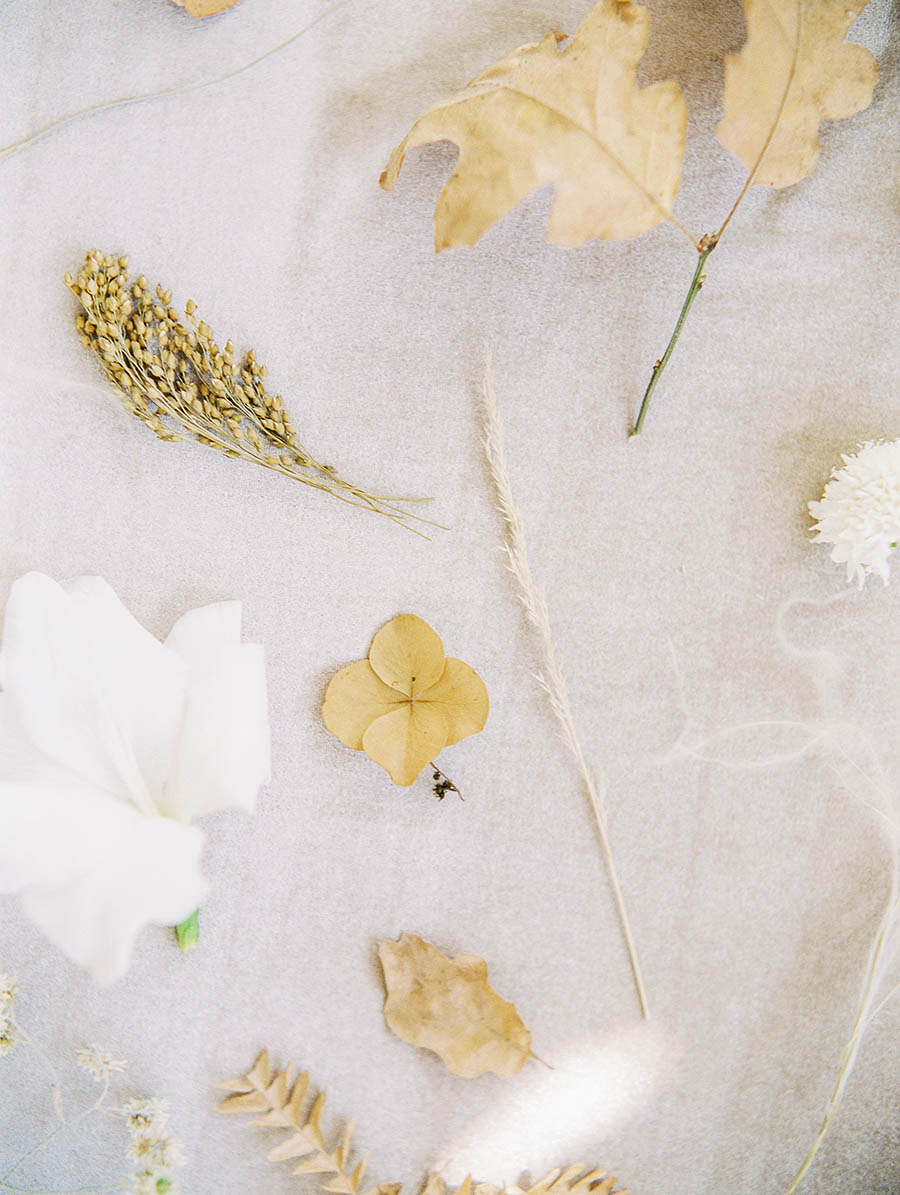 OTOGRAPHY_SHOP GOSSAMER_BUTTERFLY_LOS ANGELES WEDDING INSPIRATION-61.jpg