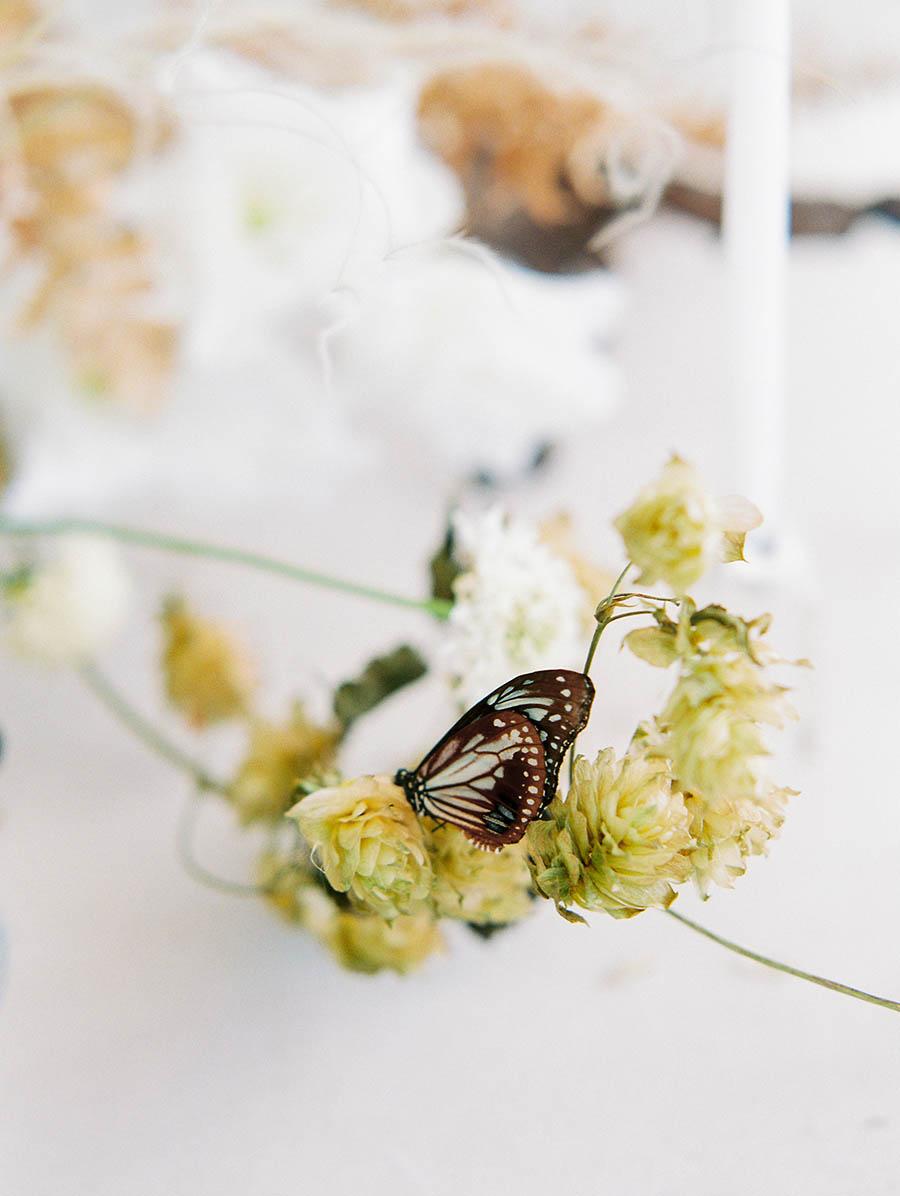 OTOGRAPHY_SHOP GOSSAMER_BUTTERFLY_LOS ANGELES WEDDING INSPIRATION-187.jpg