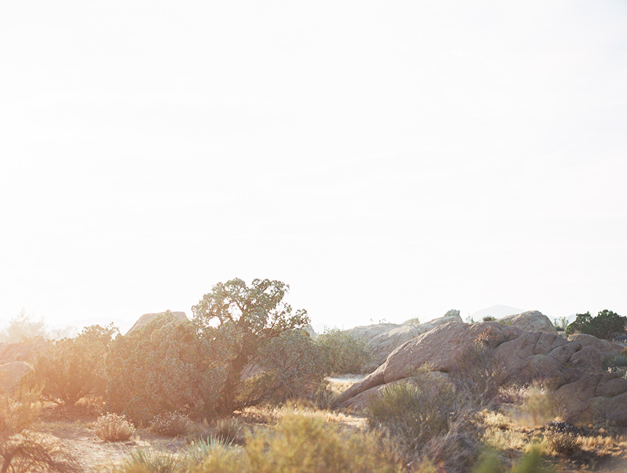 SALLY PINERA_JOSHUA TREE DESERT ENGAGEMENT SESSION-39.jpg