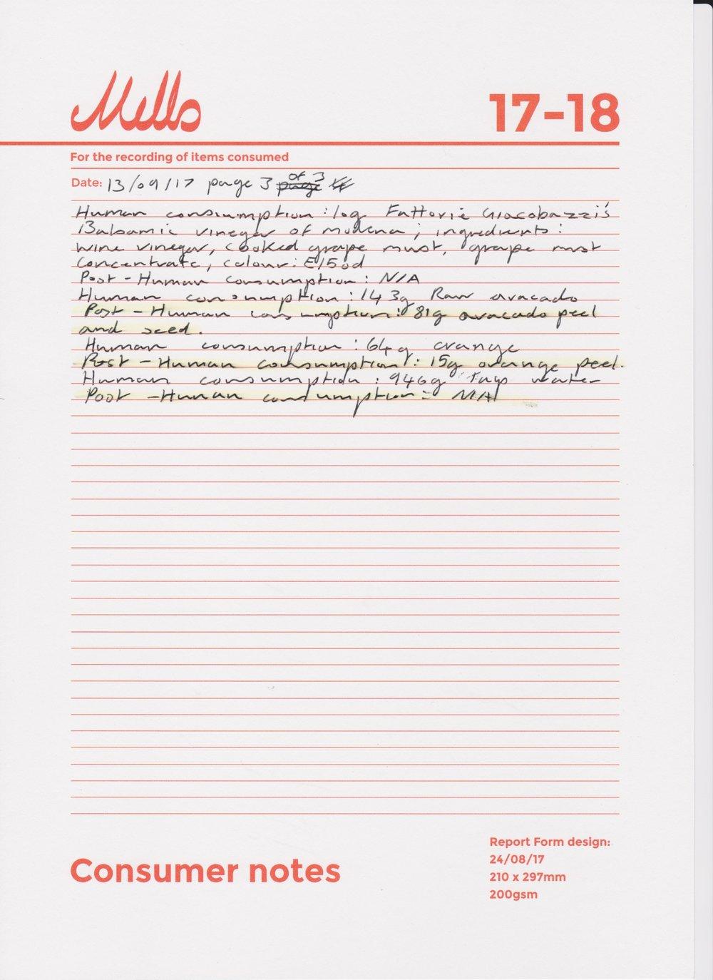 Steven Mills Consumer notes 130917 pg3 of 3.jpeg