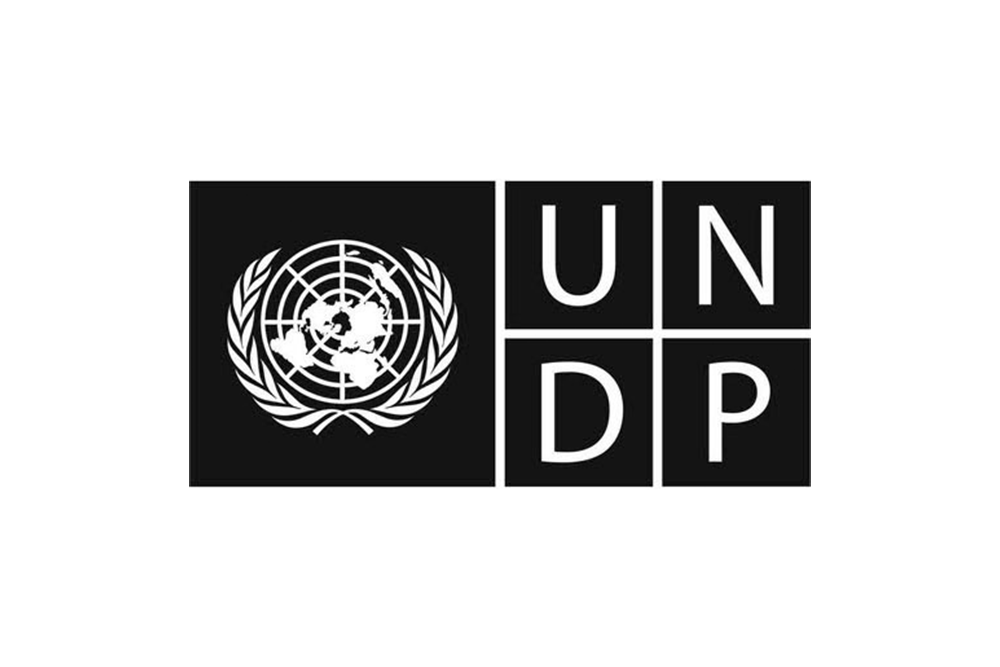 _0011_UNDP.png