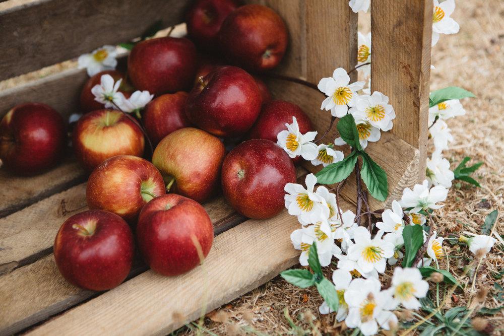 Harvest Day 132276.jpg