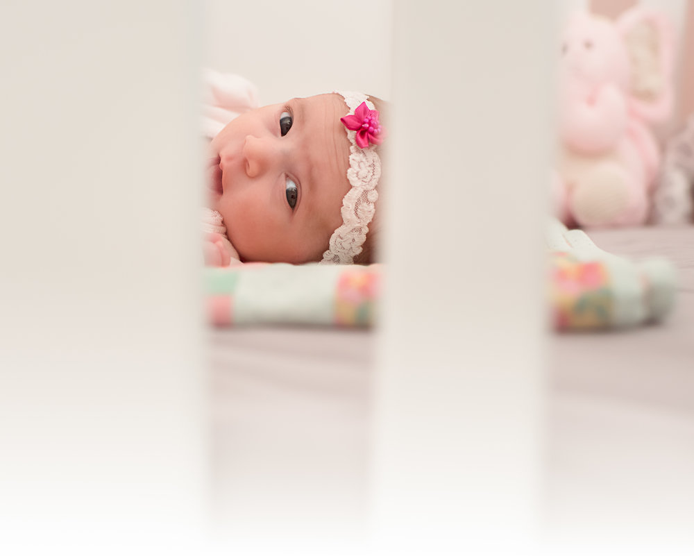 Newborn Photography in Charlotte, NC