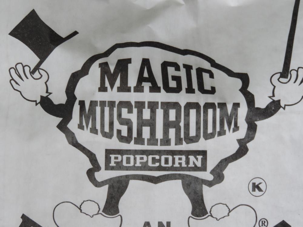 magic-mushroom-logo-large.jpg