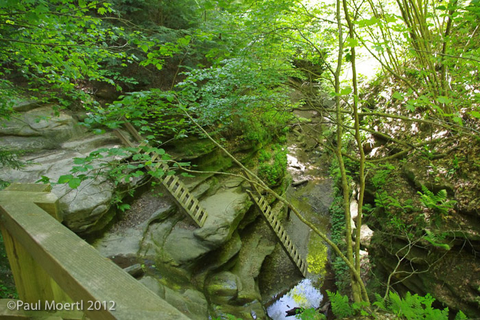 Ladders_Trail_3.jpg