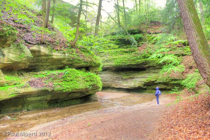 Trail_6.jpg