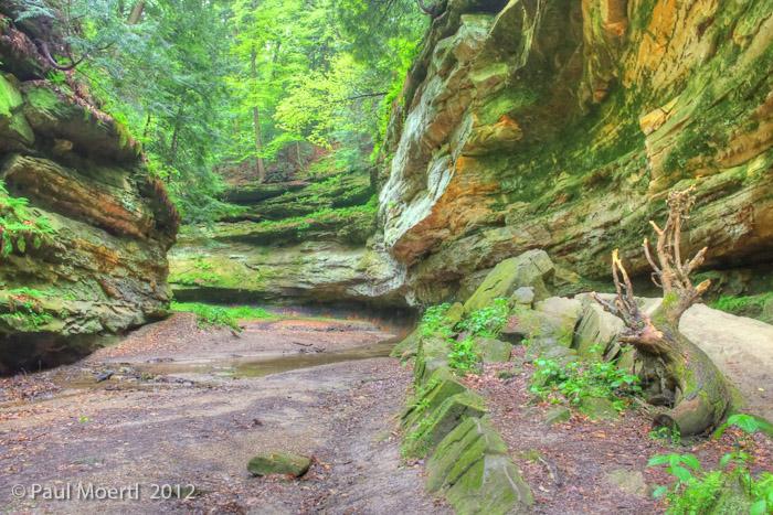Trail_6_Pano_2.jpg