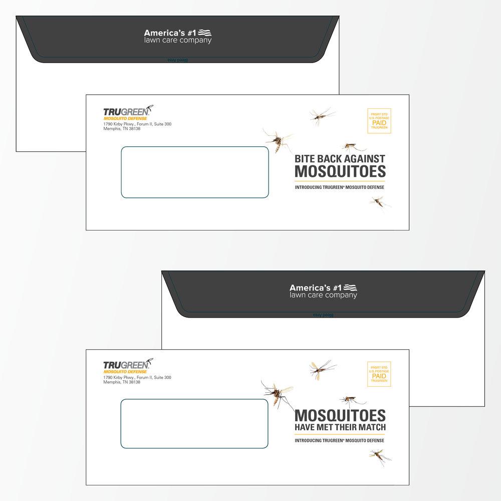 mosquito oes.jpg