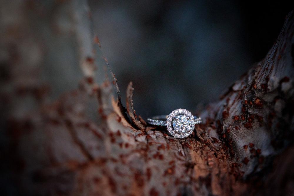NikkiMatt-Engagement-0064.jpg