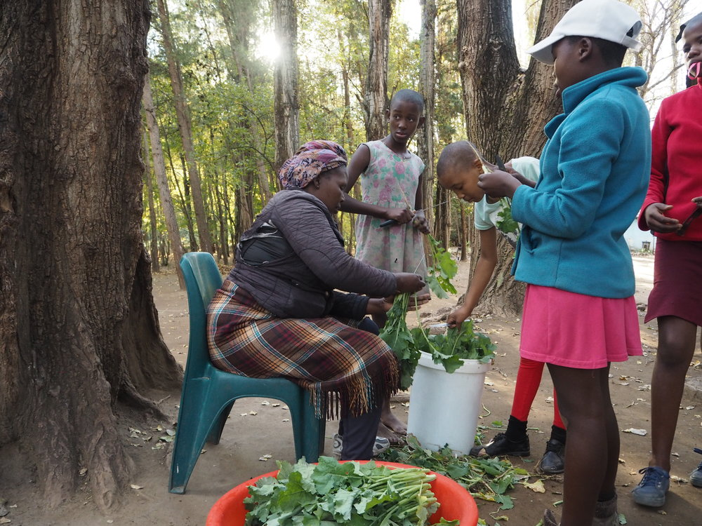 Housemother 'Me Alina and the older girls prepare spinach from the garden.