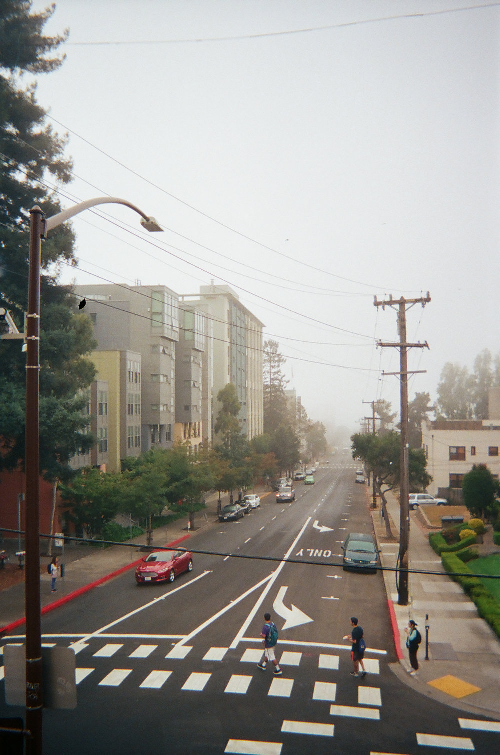 Durant Ave from the Fire Escape. Berkeley, CA.