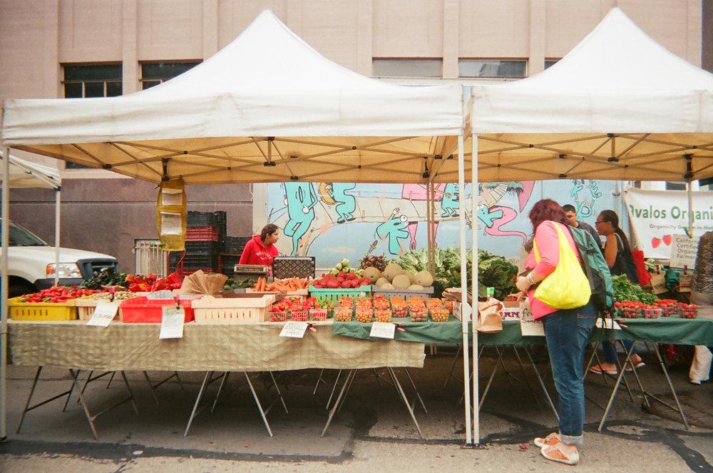 Downtown Farmer's Market. Berkeley, CA.