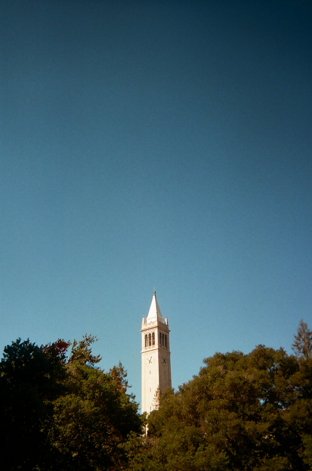 The Campanile. Berkeley, CA.