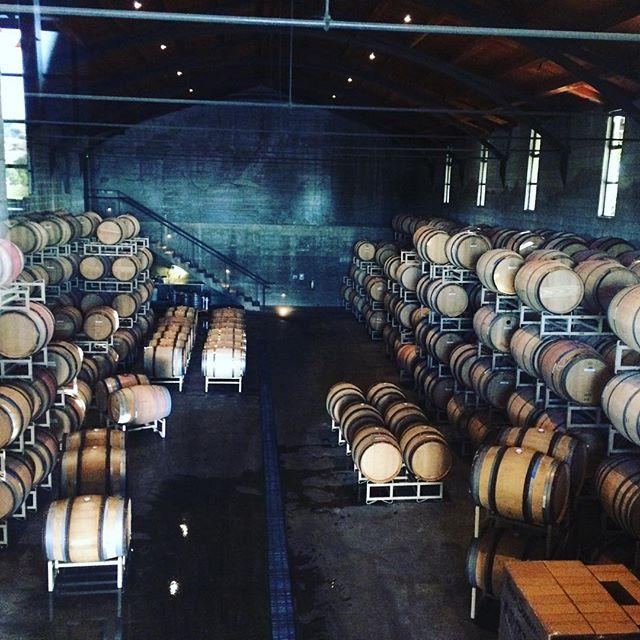 Barrels for days!! #wine #best part of #tour @foleysonoma