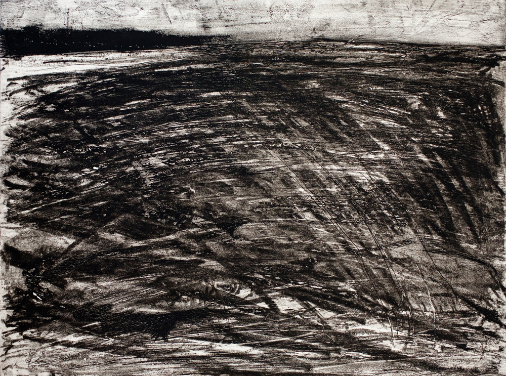 """etching with monotype  24"""" x 28"""""""