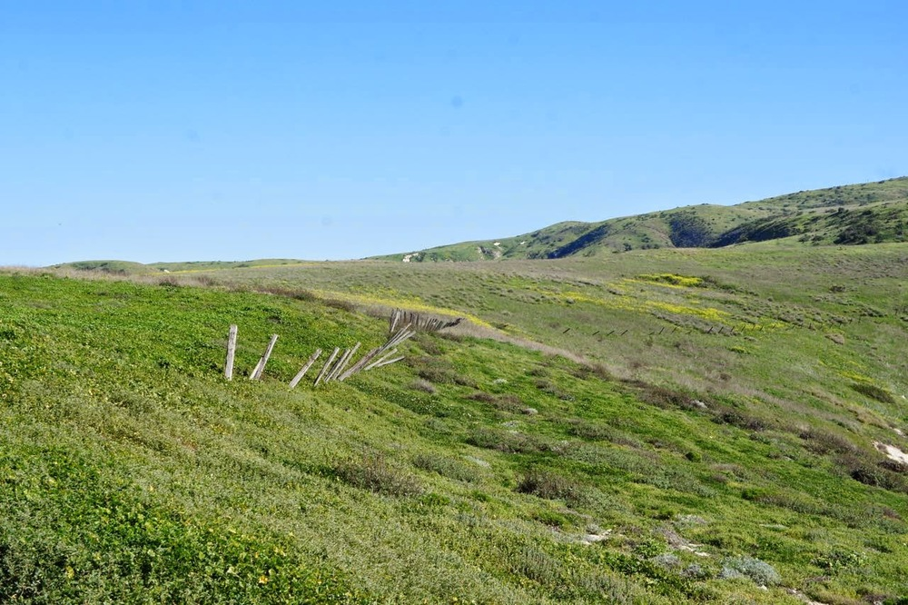 ranch fencing along Santa Cruz Island