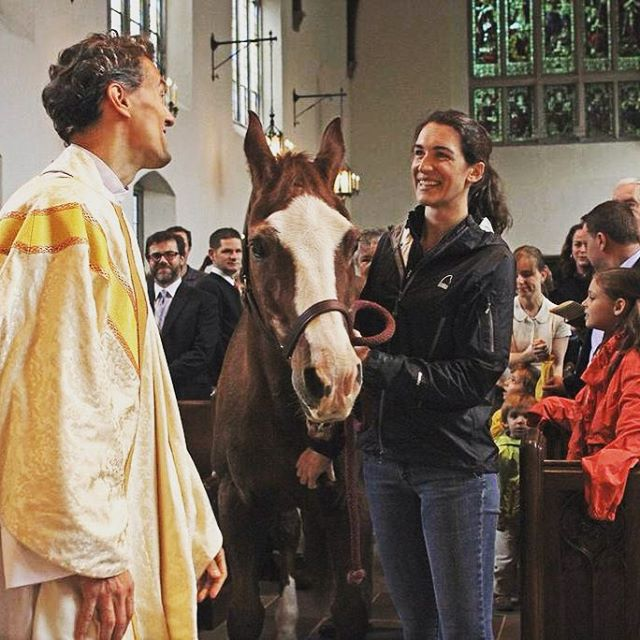 Toby the ecumenical pony. #pony #horse #blessingoftheanimals