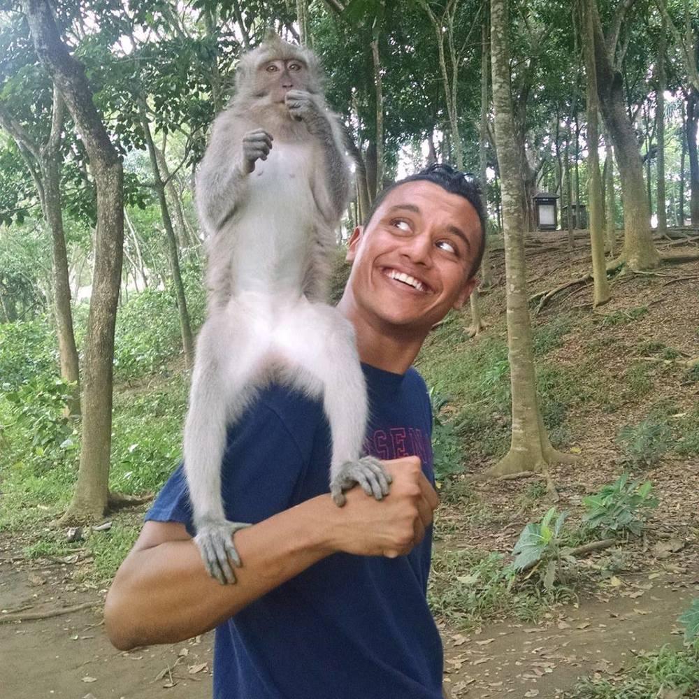 Amar Real Monkey.jpg