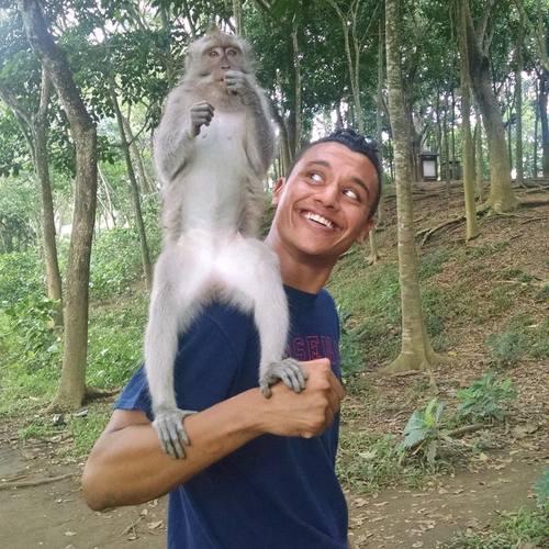 Amar+Real+Monkey.jpg
