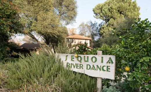 sequoia-river-dance-bed-and-breakfast-82800.jpg