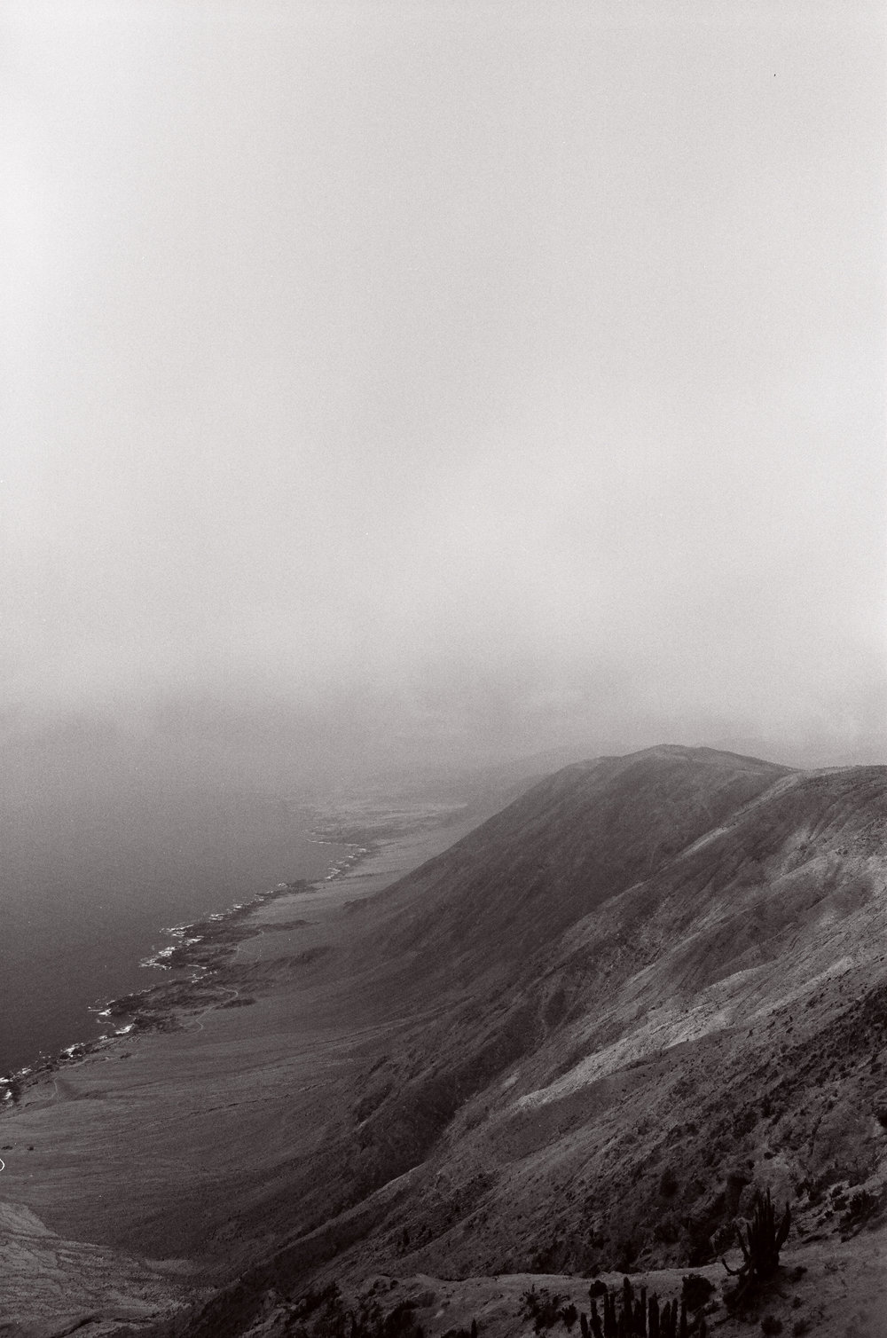 norteface-33.jpg