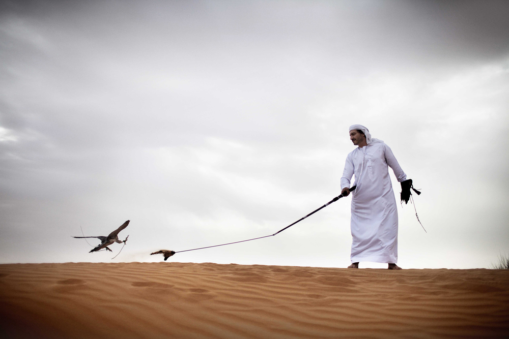 CULTURE - Desert and Falcon copy.jpg