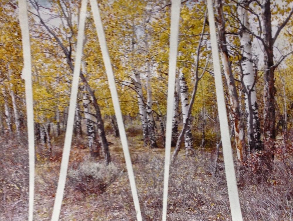 "Splintered View  Winter 2012 Original photograph on paper 14"" x 11"""