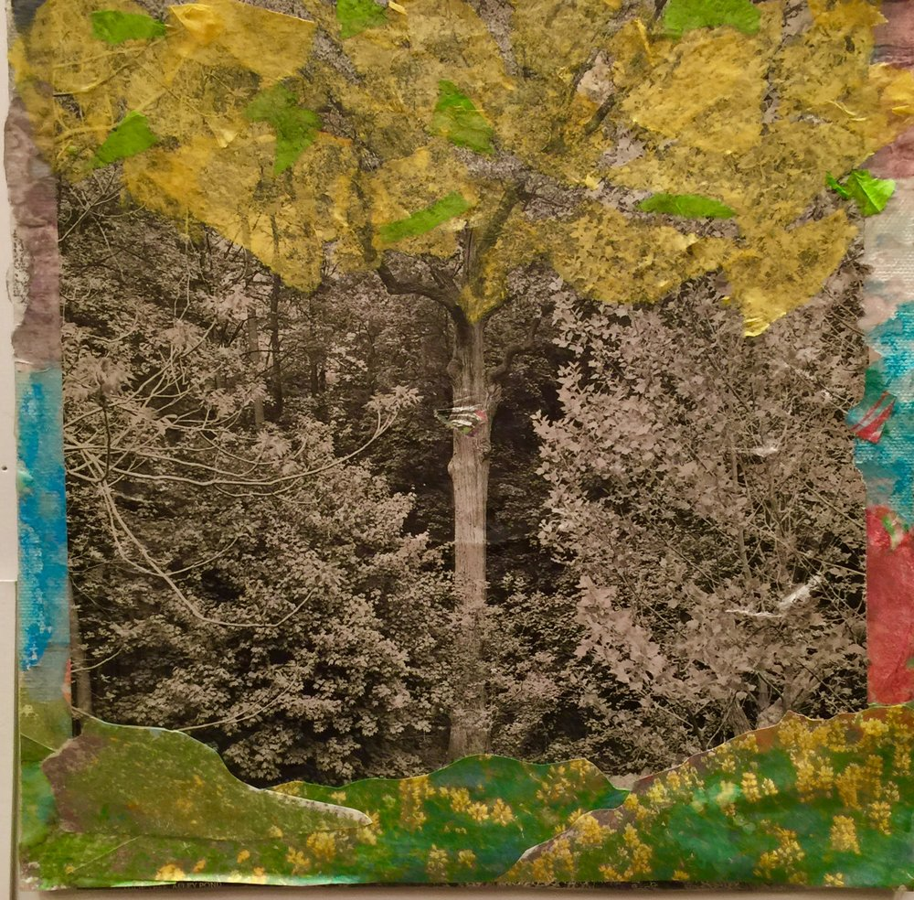 "Sudden Changes   Fall 2016   Original photo transfers, tissue paper, oil pastels on paper   11"" x 14"""