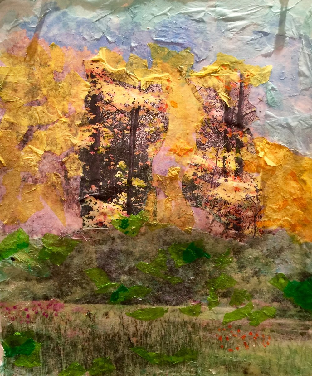 """View of Foliage   Fall 2016   Photos, transferred, torn up,tissue paper, oil pastels on paper   11"""" x 14"""""""