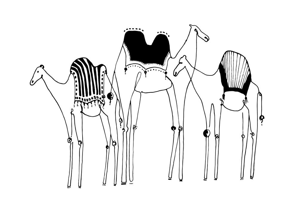 camel-05.jpg