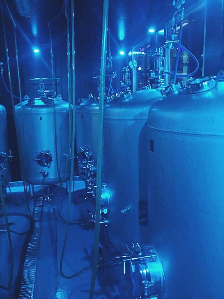 Beer Tanks | Tall Girl Meets World